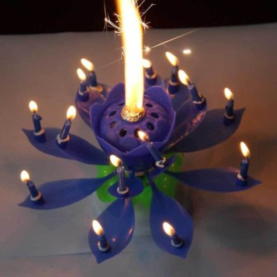 Lotus Birthday Candles