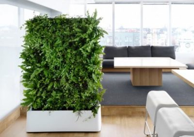 12 Pocket Indoor Vertical Living Wall Planter