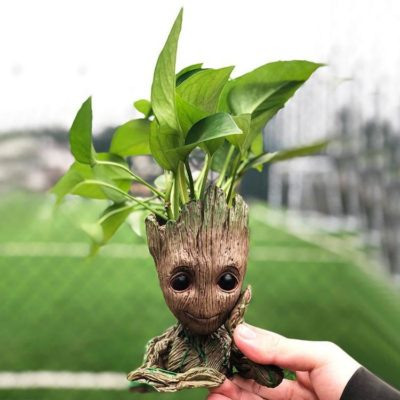Groot Man Planter Pot ! One of the cutest planters I have ever seen. Even nicer in person!